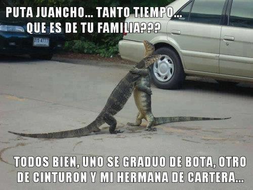juancho tanto tiempo que es de tu familia reptiles abrazo bota cinturon zapato cartera