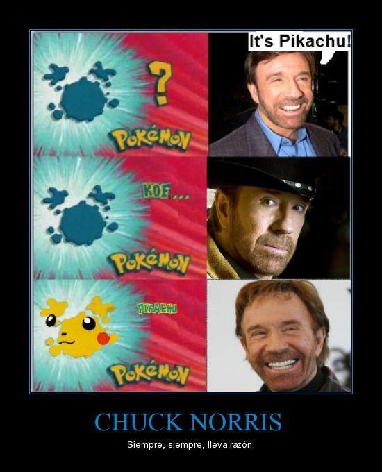 cual es este pokemon es pikachu chuck norris siempre tiene la razon