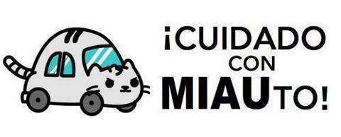 cuidado con miauto gato movil gatito coche carro automovil