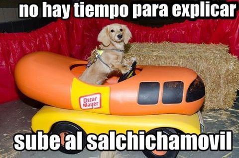no hay tiempo para explicar subete al salchichamovil perro lucho