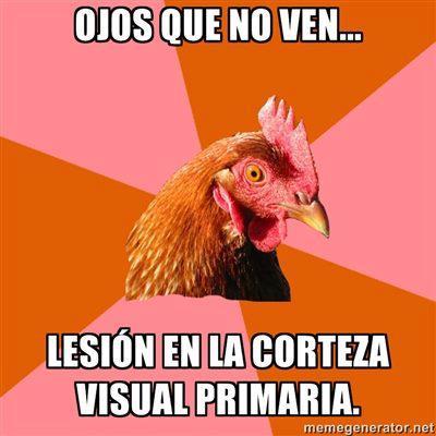 ojos que no ven lesion en la corteza visual primaria antijoke chicken gallina anti chistes anti bromas meme