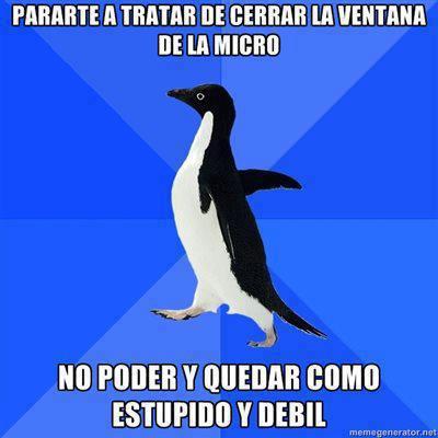 pararte a tratar de cerrar la ventana del micro no poder y quedar como debil y estupido socialy akward penguin pinguino meme azul